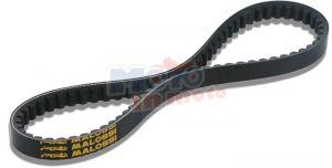 Belt trasmissione