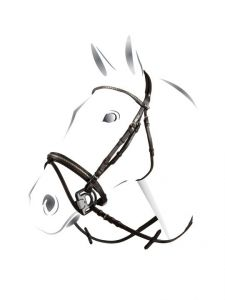 Briglia Equestro c/noseband mod. clincher completa di redini