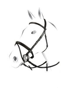 Briglia Equestro mod. Deco completa di redini