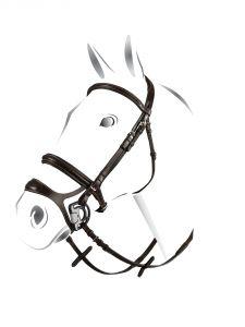 Briglia Equestro mod. Combined