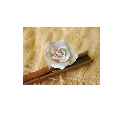 Le Rose dei Sogni