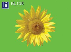 KL108