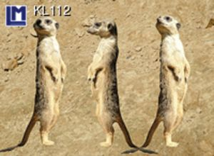KL112