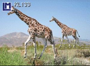 KL133