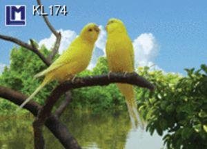KL174