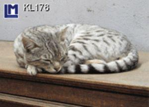 KL178