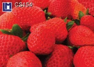 CS154