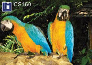 CS160