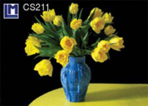 CS211