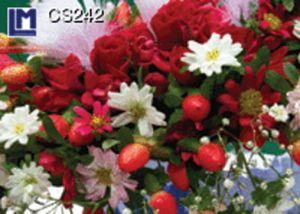 CS242