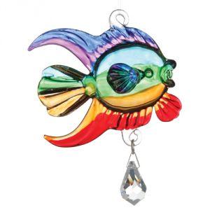Pesce corallo arcobaleno
