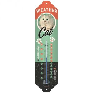 80319 Weather Cat