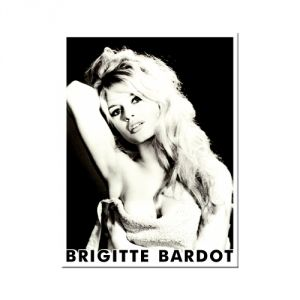 14067 Brigitte Bardot