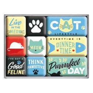 83109 Cat Lifestyle