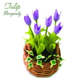 Tulipano Burgundy