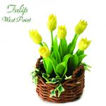 Tulipano West Point
