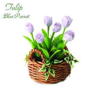 Tulipano Blue Parrot