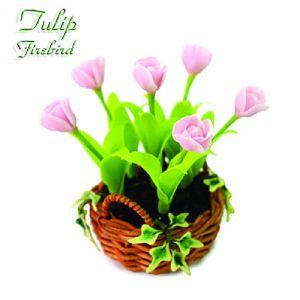 Tulipano Firebird