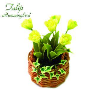 Tulipano Hummingbird
