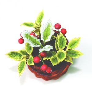 Agrifoglio foglie chiare e bacche rosse