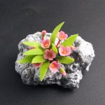 Alpine Rock Jasmin