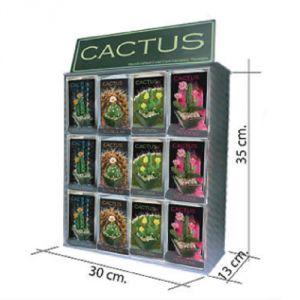 Espositore 24 Cactus in miniatura