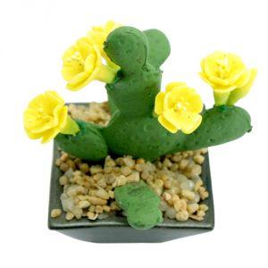 Opuntia giallo