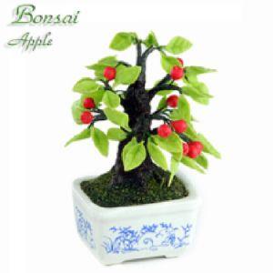 Bonsai Melo (Topo)
