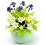 Fiori Cancro: Iris e Crisantemo