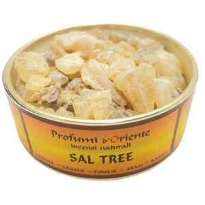 Sal Tree