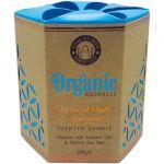 Candela organica, profumazione Legno d'Agar