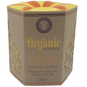 Candela organica, profumazione Sandalo
