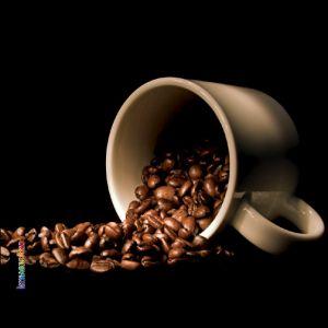 Pannello 10 x 10 cm, caffè 1.