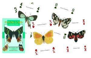 PC27 Farfalle - Playing Card