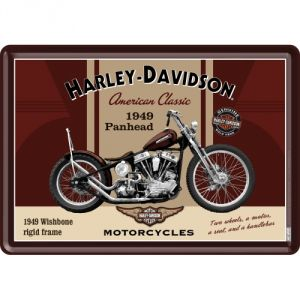10198 Harley Davidson