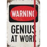 54003 Genius at Work