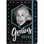54008 Einstein - Genius Notes