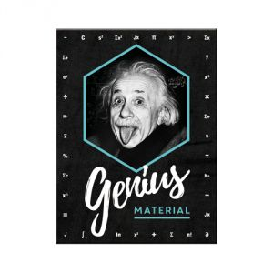 14395 Einstein - Genius Material