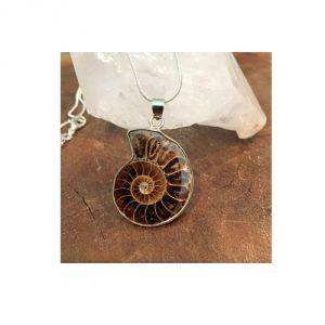 Ciondolo Ammonite