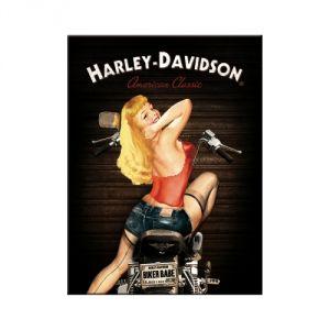 14333 Harley Davidson