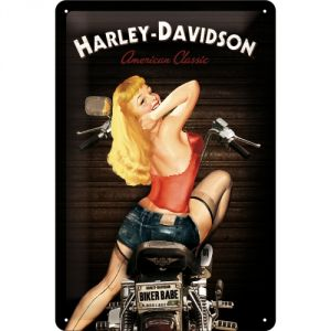 22214 Harley Davidson - Biker Babe