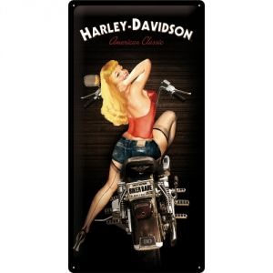27016 Harley Davidson