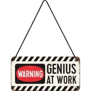 28007 Genius at Work