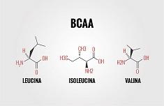 Amminoacidi Ramificati (BCAA)
