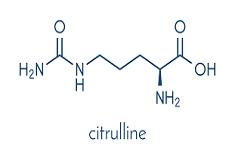 Citrullina