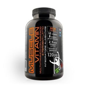 NET MUSCLE VITAMIN 120 CPR