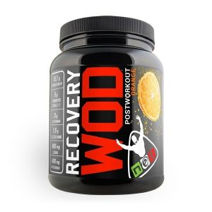 NET RECOVERY WOD ORANGE 600GR