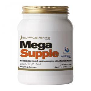 I SUPPLEMENTS MEGA SUPPLE 300 GR