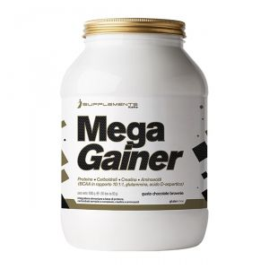 I SUPPLEMENTS MEGA GAINER