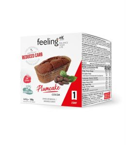 FEELIMG OK PLUMCAKE CACAO 45gr. START 1